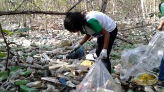 activistas de la paz limpiando bosque