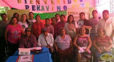 Participación indigenas.