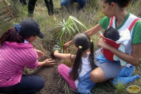 Brasil, futuras generaciones apoyando campaña de siembra de arboles
