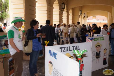 Con cuatro módulos se celebro Feria por la Paz