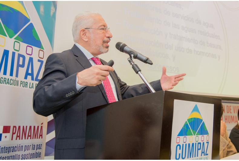 vicepresidente del Cómite Nacional Mexicano