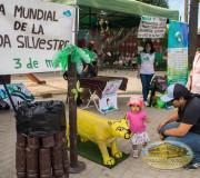 El Huemul, El puma Chileno