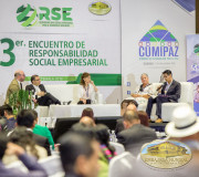 RSE y negocios sustentables