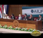 Primer Seminario de la ALIUP en Paraguay