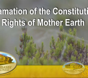Proclamation of the Constitution of the Rights of Mother Earth   GEAP