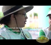 Día Mundial de los Bosques y el Agua, Puerto Rico | EMAP