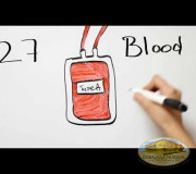 Life is in the Blood - Donation in Illinois, USA I GEAP