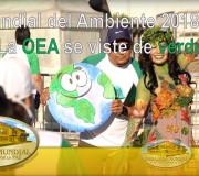 Hijos de la Madre Tierra - Día Mundial del Ambiente 2018: La OEA se viste de verde | EMAP