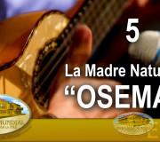 El Poder de la Música - Lanzamiento OSEMAP - La Madre Naturaleza | EMAP