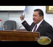 Sesión Diplomática -  Mesa 2: Dip. Raúl Romero Segura